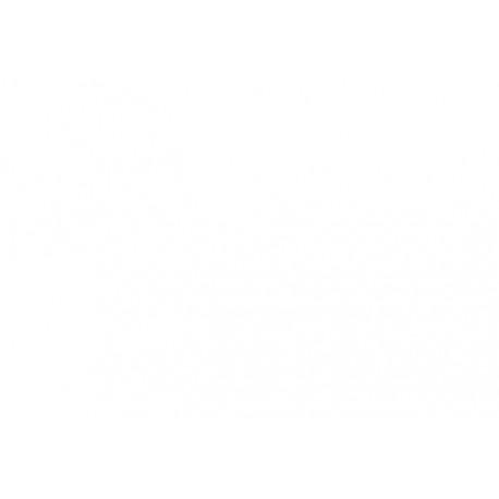 Cartucho Filamento Abs Color Grape Purple 600gr Para Impresoras Xyz Dav...