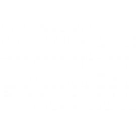 53ml Pigment B300,b310n,b500dn,b540dn-c13t616400 Amarillo