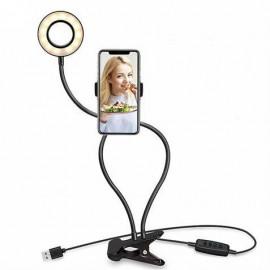 Caja 6 Pz. Fruta Madera Wonderworld Ww-4512