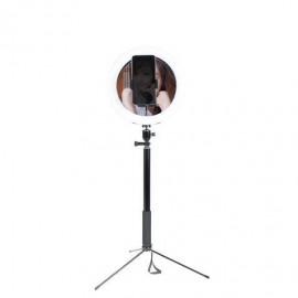 Bolsa 12 Pz. Alimentos Envasados Miniland 30596