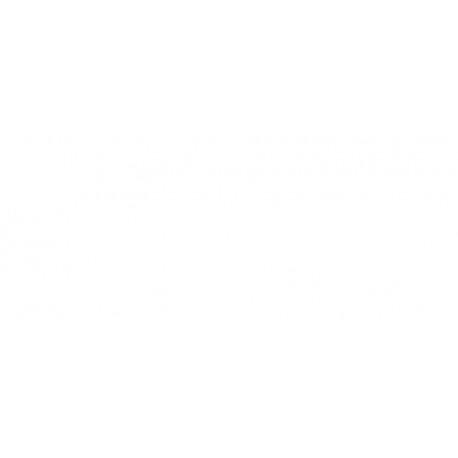 Rec. Anual Ag. Finocam Plana P499 S/v Pl4 Cast