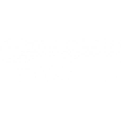 Rec. Anual Ag. Finocam Plana P497 M/v Pl4 Cast